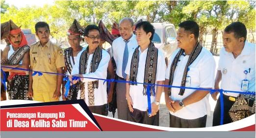 Perancangan Kampung KB di Desa Keliha Sabu Timur